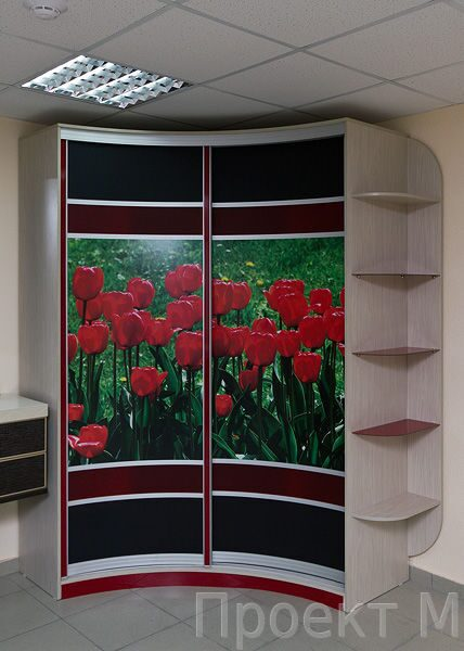 Радиусный шкаф купе с фотопечатью радиусные и угловые шкафы .